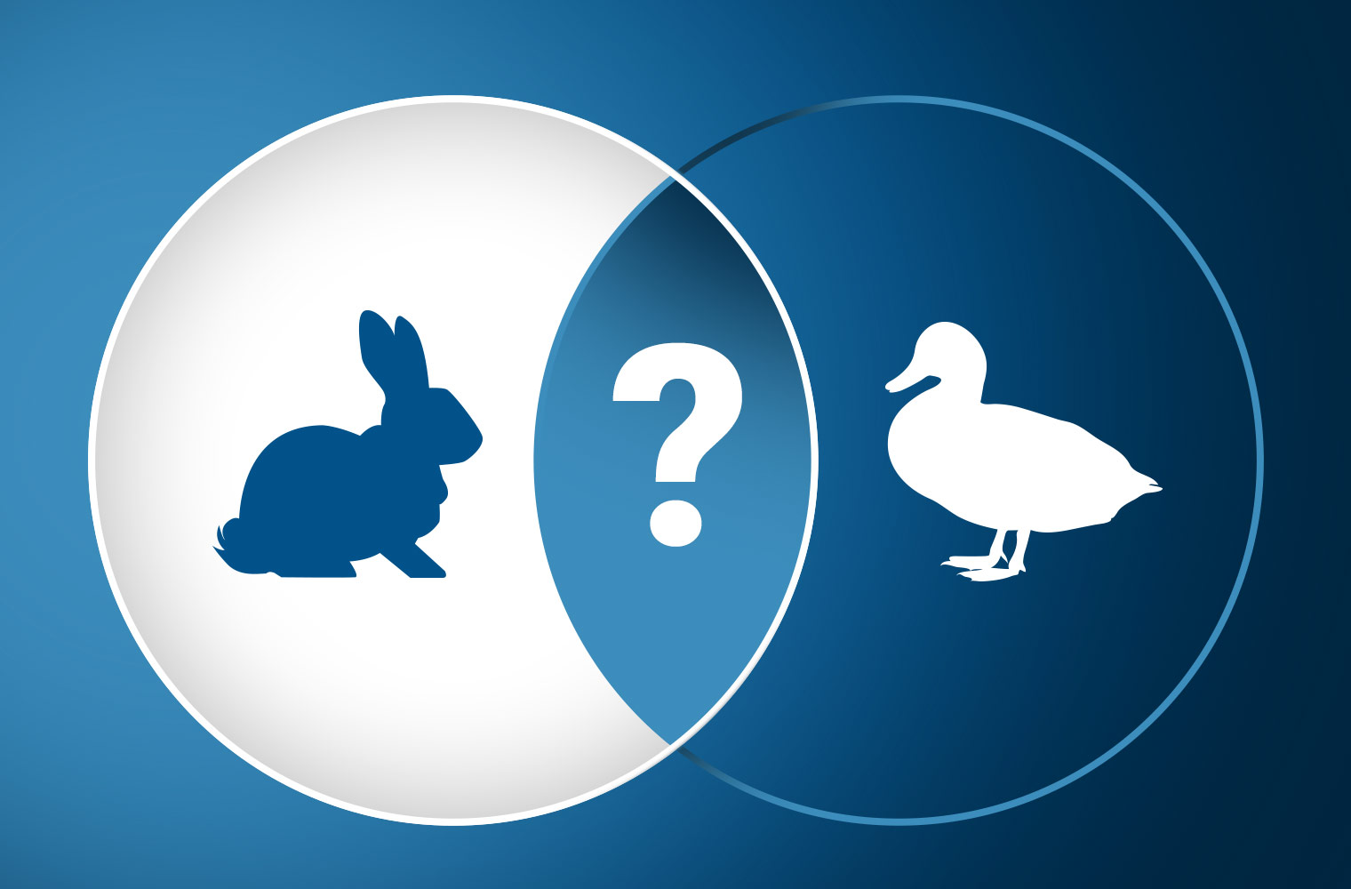 Feature Image You Can't Unsee the Rabbit